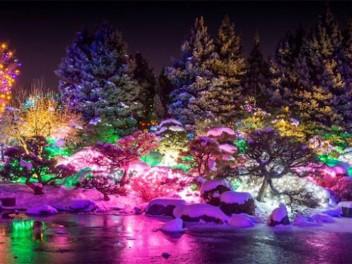 Denver Botanic Gardens - Blossoms of Light
