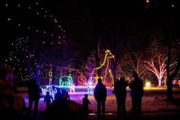 Denver Zoo Lights