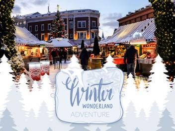 Winter Wonderland Adventure - Corporate Holiday Event Planning